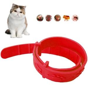 2020 In Stock Adjustable Pet Dog Cat Flea Collar Anti Flea Tick Mite Louse flea Collar Rubber Necklace Pet Protect Pet Supply(China)