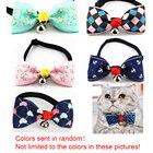 Accessories Puppy Cl...