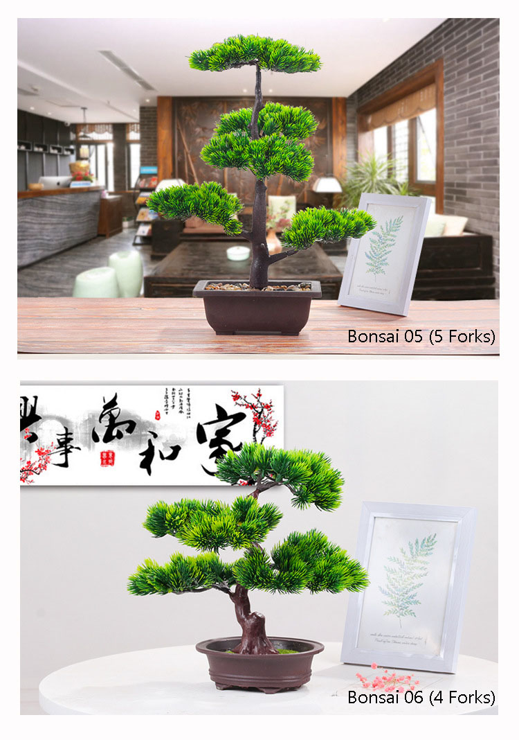 Top 10 Largest Bonsai Large Tree Brands And Get Free Shipping A796