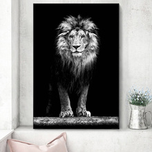 Black And White Lion Staring Home Decor Wall Art Poster And Prints Animal Picture On Canvas Painting For Living Room Wall Decor michael jordan dunk pose poster and prints basketball superstar wall picture on canvas wall art painting for living room decor