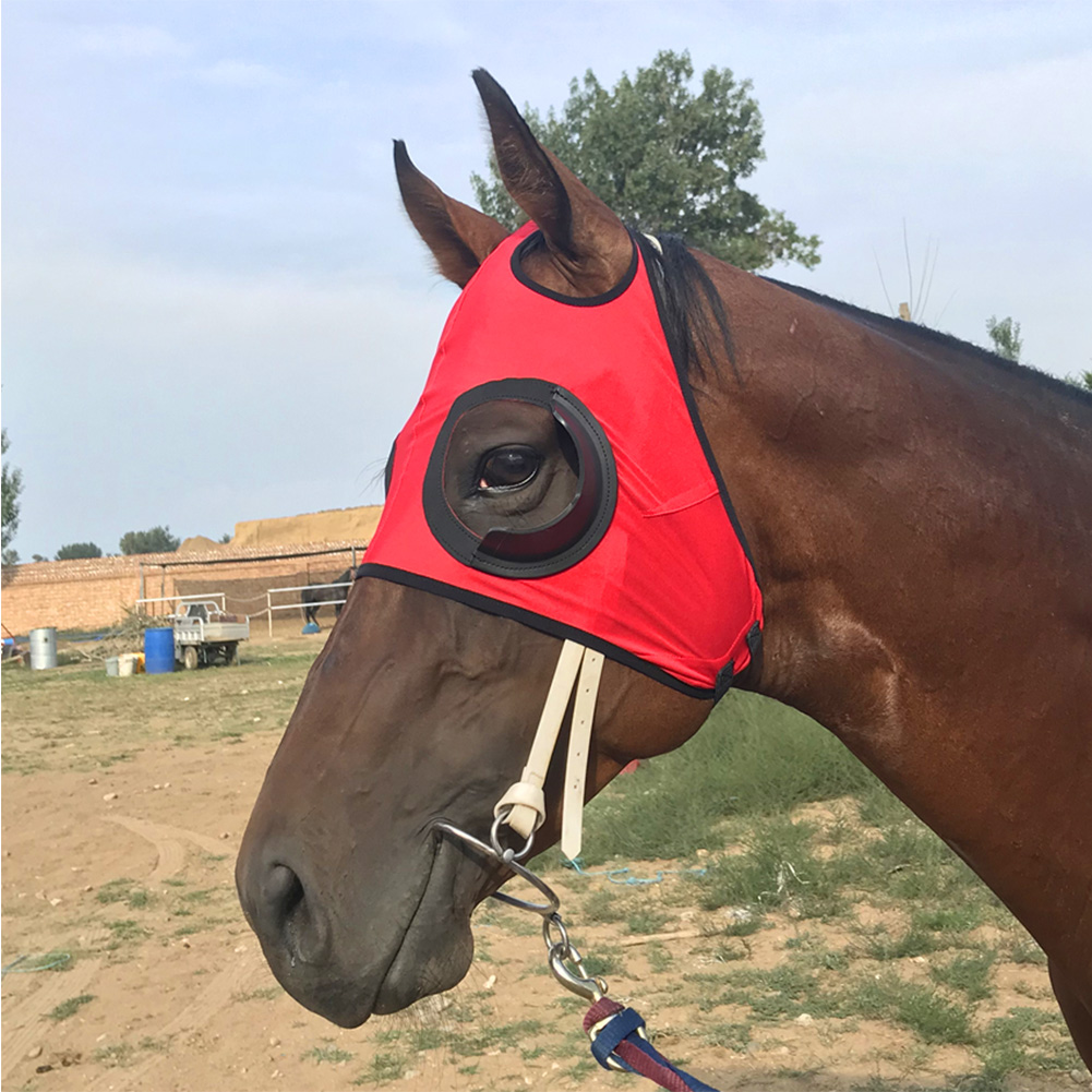 Breathable Outdoor Sports Anti Mosquito Quarter Cup Horse Fly Mask Full Face Durable Safety UV Protection Visible Blinker Hood