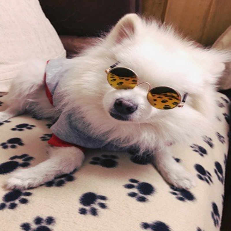 Nueva moda muñeca americana Cool gafas juguete perro mascota gato gafas de sol de resina para BJD Blyth bebé juguete foto muñeco atrezo Accesorios