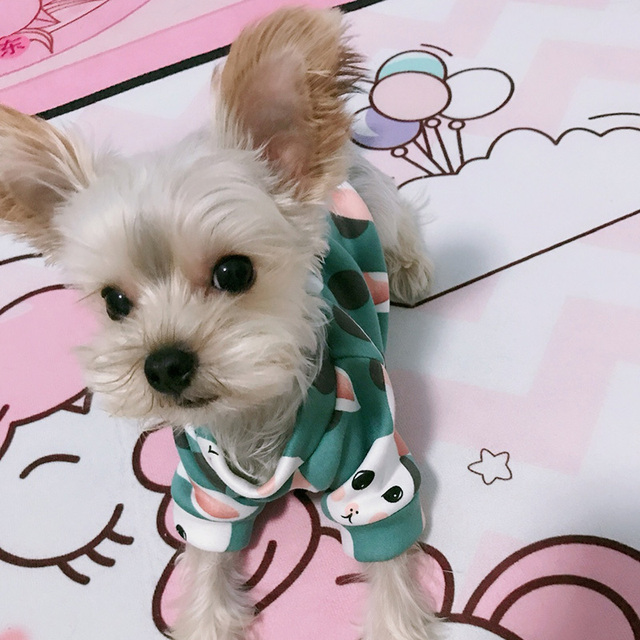 Cute Soft Pet Dog Clothes for Small Dogs Shih Tzu Yorkshire Hoodies Sweatshirt Soft Puppy Cat Costume Clothing 5