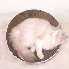 Toys Scratcher-Post Corrugated Cardboard Interactive Cat Round Kitten Lounge-Bed Nails