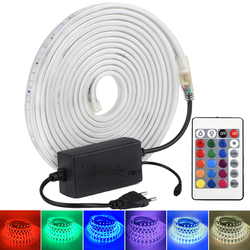 AC 220V RGB LED Strip Dimmable RGB Color Tape Changeable with 24Key Remote Controller IP67 Waterproof Flexible LED Light Strip