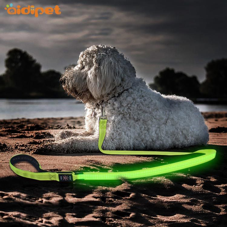 Hot Sales Pet Traction Rope Shining Multi-functional Dog Hand Holding Rope Outdoor Sports Pet Light-emitting Supplies
