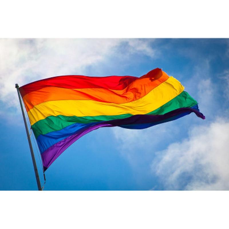 Rainbow Flag Colorful Rainbow Peace Flags Banner LGBT Pride LGBT Flag Lesbian Gay Parade Flags Home Decoration