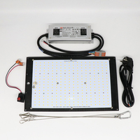 Superbright Samsung LM301H Dimmable 150w 3000K/3500K 660nm UV IR grow light quantum tech led board Switch with Meanwell driver