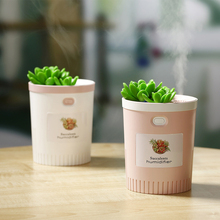 350ML Succulent Plant Humidifier USB Mini Nano Spray Negative Ion With Colorful Night Lights Home Office Mute Air Purifier