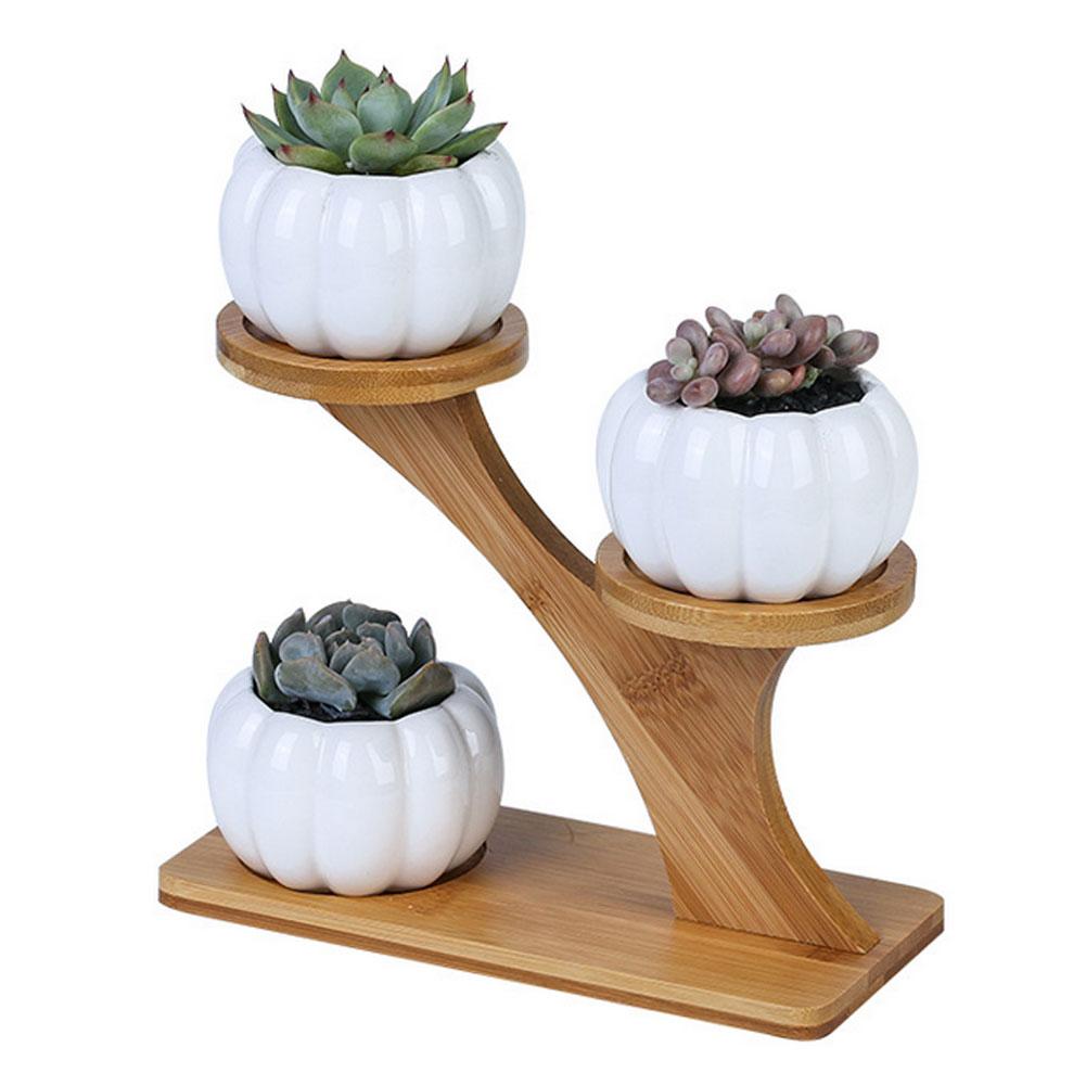 1 набор керамика керамика сад горшки современные тыква цветочный горшок детская суккулент растение горшок кашпо 3 уровня бамбук полка растение подставка