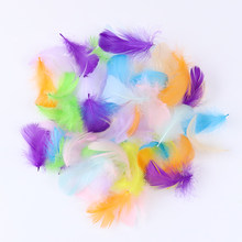 100PCS Natural Goose Feathers DIY Jewelry Making Carnival Decoration Clothes Accessory Small Swan Dyed Plumes For Crafts 5-8 CM