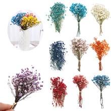 1 worek kolorowe suszone kwiaty małe naturalne suszone z roślinami i kwiatami Mini prawdziwe bukiety dekoracji wnętrz fotografia rekwizyty rzemiosło artystyczne