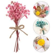 1 PC prawdziwe kwiaty Mini naturalny suszony kwiat bukiet dekoracje ślubne kreatywne walentynki bukiety kwiatowe rekwizyty fotograficzne