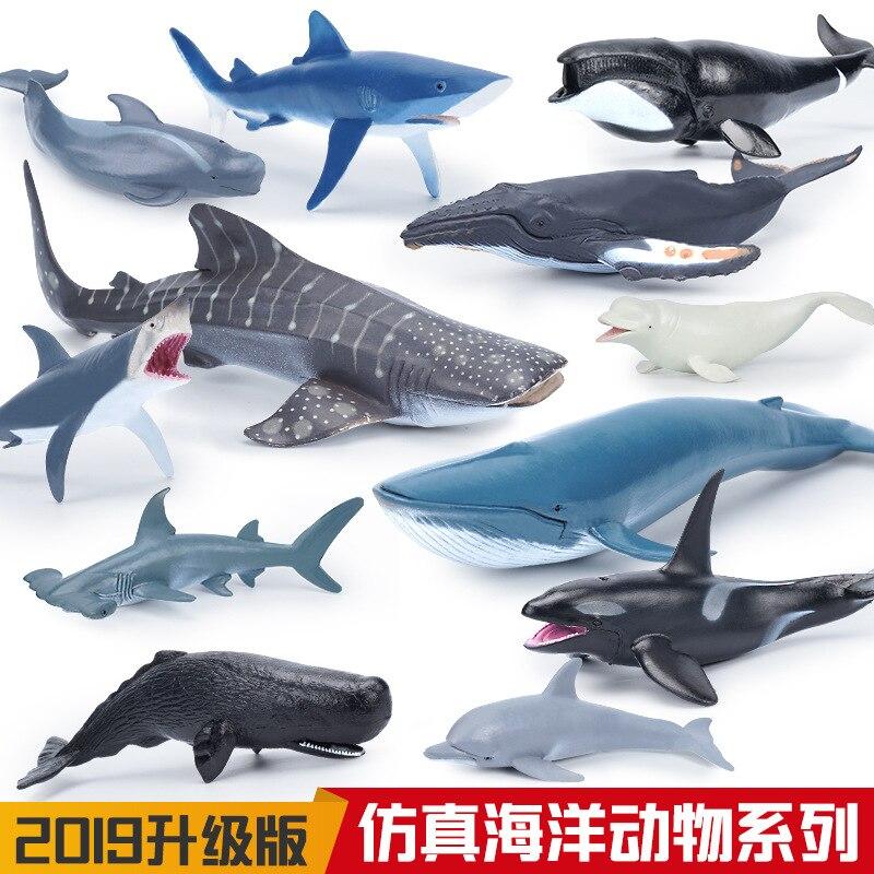 Моделирование морской жизни, модель животного, пилот, Акула, Кит, beluga humpback, дельфин, экшн-игрушки, фигурки, образовательный коллекционный под...