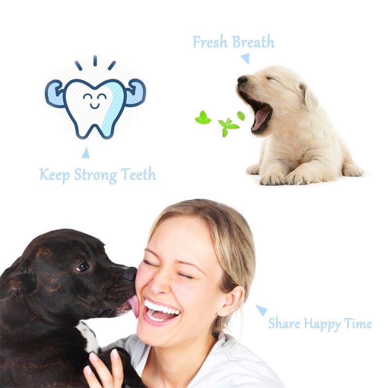 Juego de pasta de dientes y cepillo de dientes para perro 4