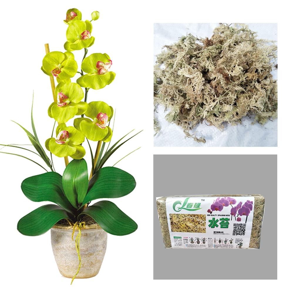 6L Flower Cultivation Sphagnum Moss Garden Supplies Durable For Orchid Organic Fertilizer Home #560