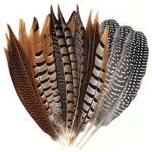 10 Pçs/lote Pluma Natural Lady Amherst Penas Da Cauda do Faisão de Ringneck Penas de Faisão Para Artesanato Decoração Festa de Casamento DIY