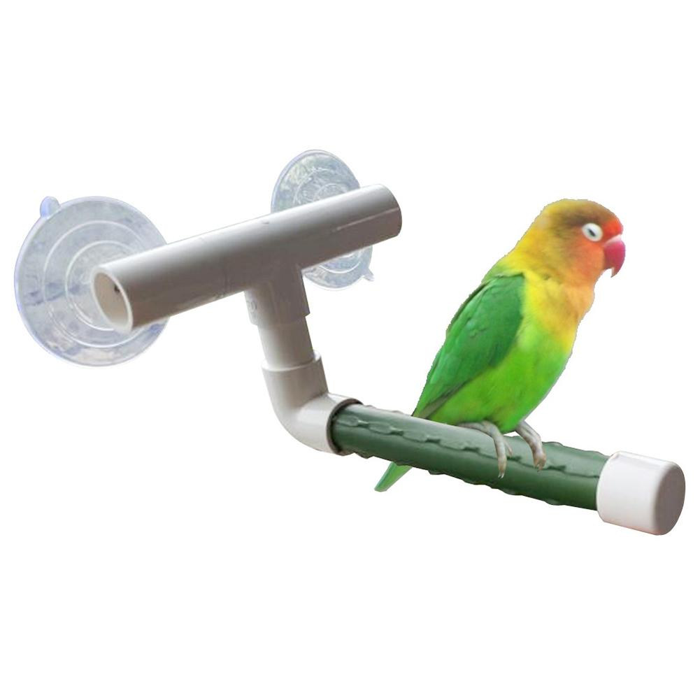 Birds font b Pet b font Wall Suction Cup Paw Grinding Stand Shower Perches Parrot Budgie
