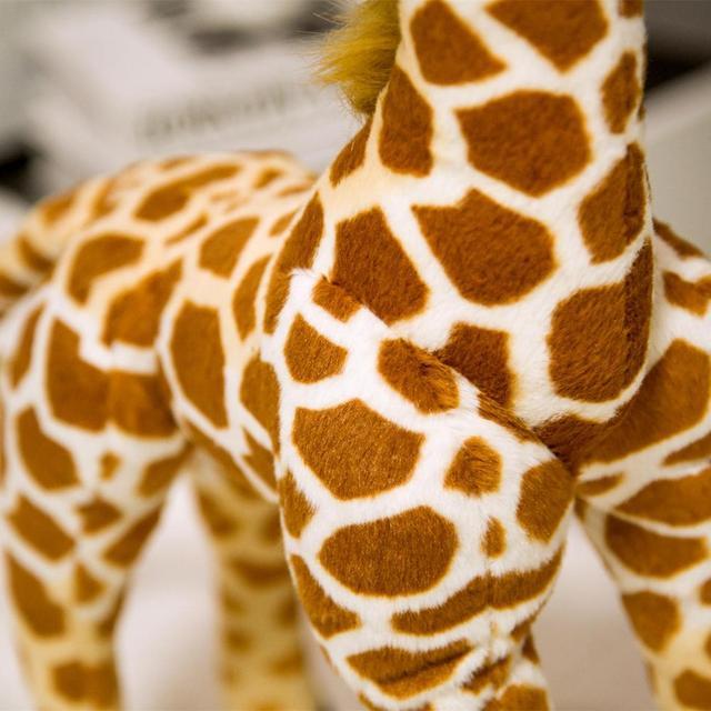 R/äder Home Office Tierfreunde Giraffe 4x7,5cm