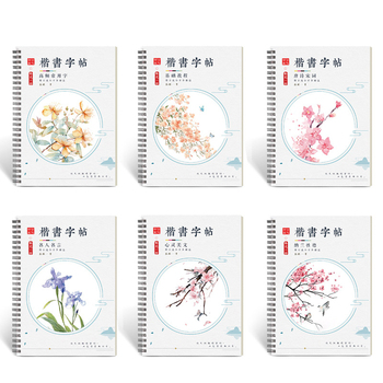 6 pcs 3D Chinese Characters Reusable Groove Calligraphy Copybook Erasable pen Learn hanzi Adults Art writing books Send gifts china s famous carving books chinese calligraphy painting seal art techniques