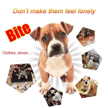 Dog Funny Toys 2