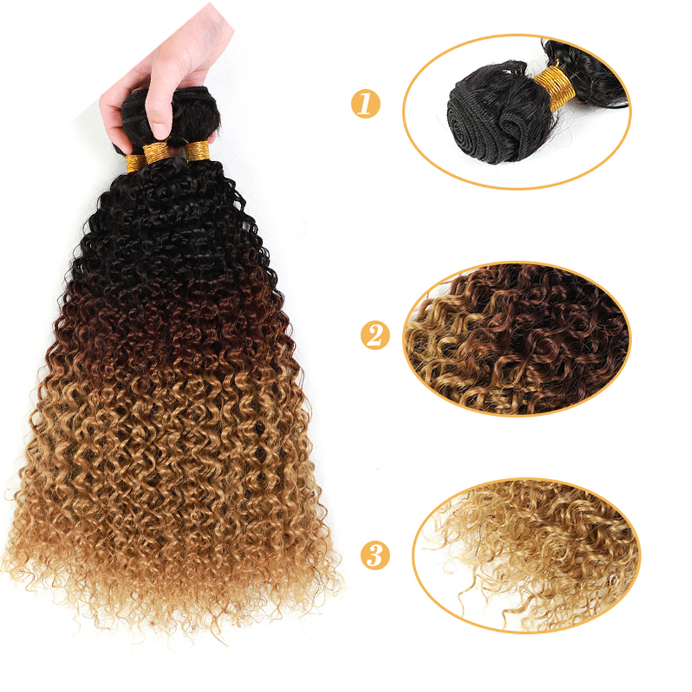 Aigemei 3pcs Kinky Curly Synthetic Hair For Women High Temperature Fiber Long Short  Ombre  African American