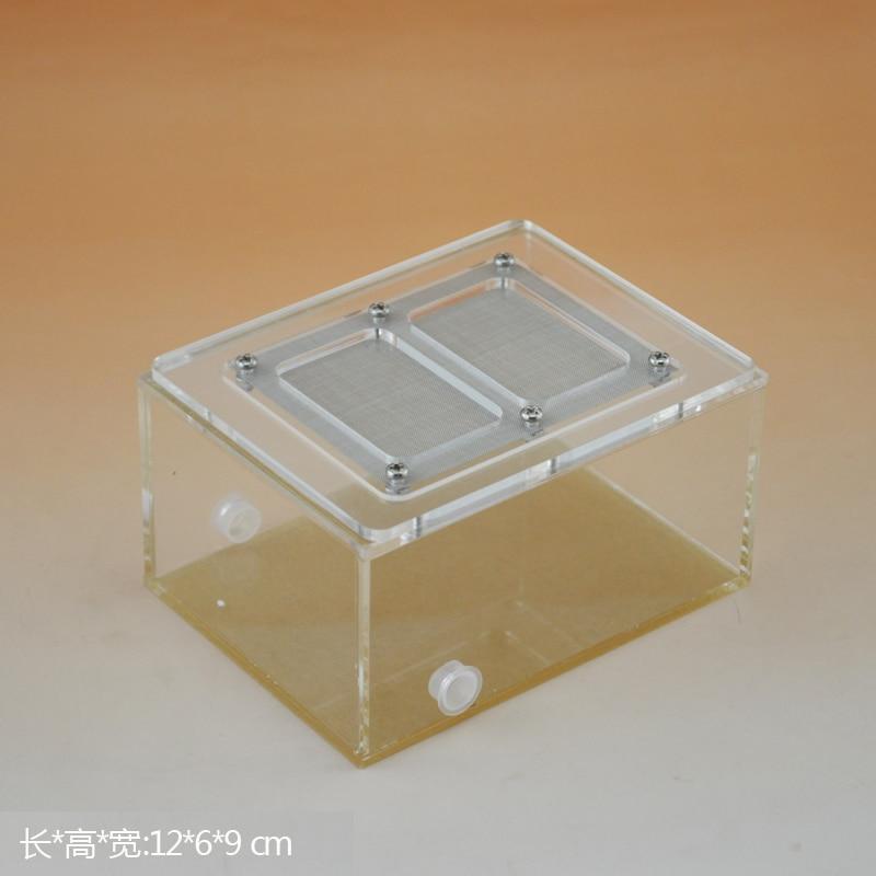 Formiga do ninho da formiga da caixa do réptil de kun 12*6*9 cm acrílico com caixa de alimentação da tampa