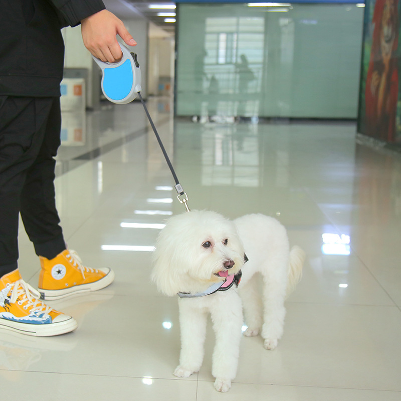 Pet Automatic Flexible Tractor Dog Hand Holding Rope Creative Dog Chain Dog Useful Product