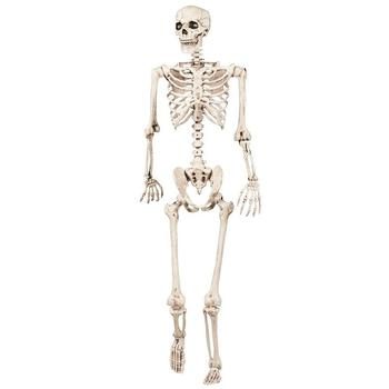 40cm Halloween Scary Skeleton Toys Props Decorations Human Model Skull Full Body Mini Figure for Kids