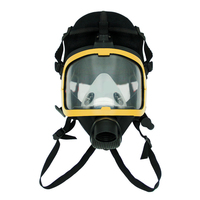 Electric Air Fed Full Face Gas Mask Constant Flow Supplied Respirator System Kit Protective Mask For Construction Power Tool New