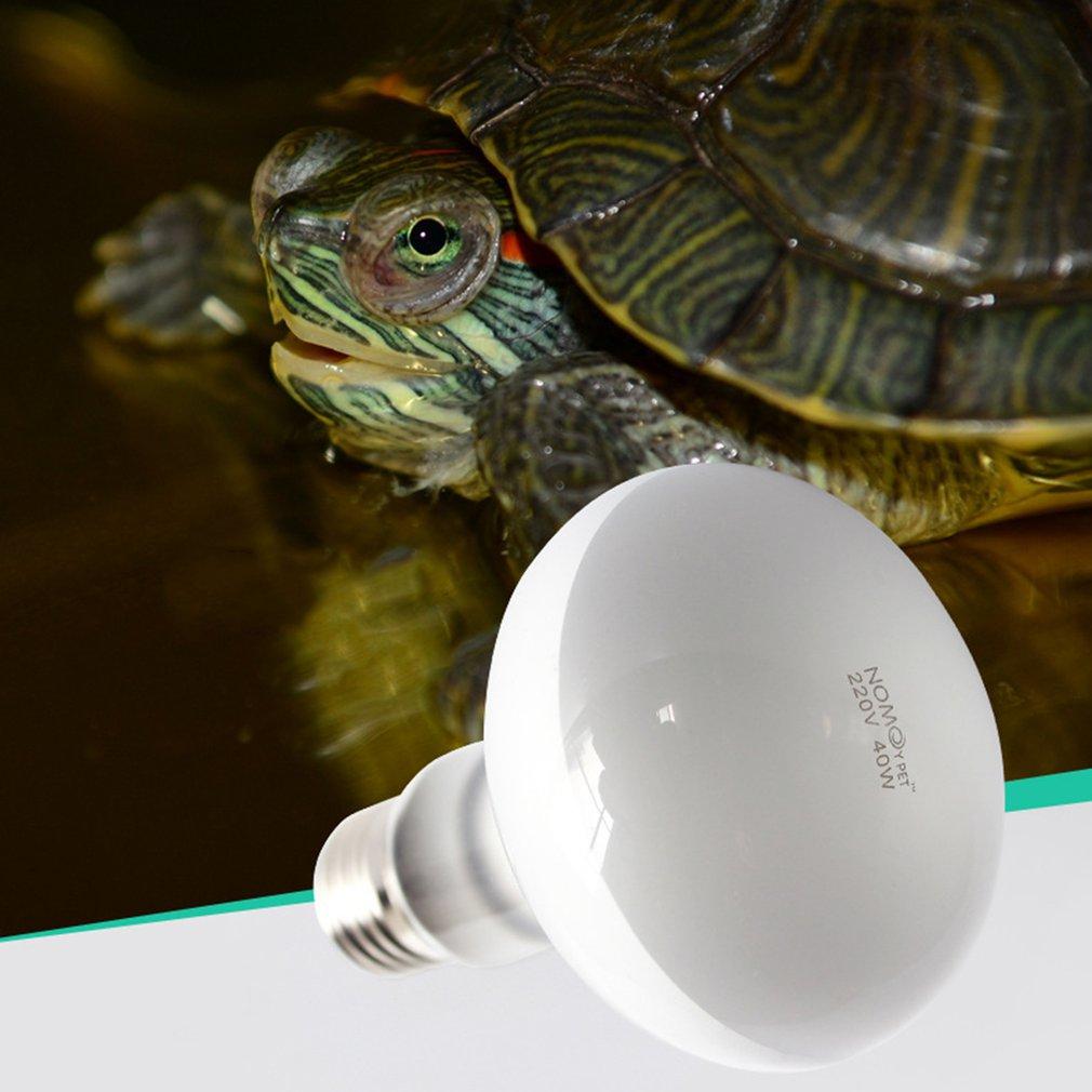 220V UVA Reptile Lamp Bulb Turtle Basking UV Light Bulbs Heating Lamp Amphibians Lizard Terrarium Temperature Controller 25/40W