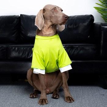 Ubrania dla dużych psów wiosenne i letnie cienkie ubrania dla psów Golden Retriever Labrador Doberman T-shirt dla psów czystej bawełny ubrania dla psów tanie i dobre opinie Petkit CN (pochodzenie) Wiosna lato Tkaniny Stałe