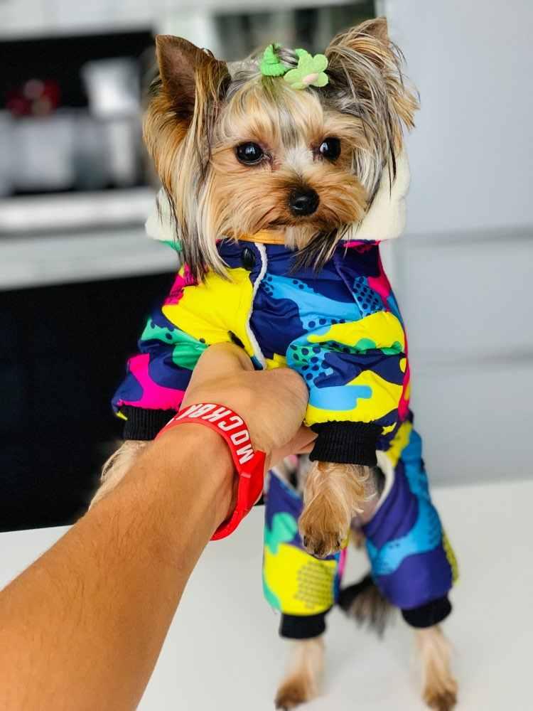 애완 동물 강아지 옷 겨울 따뜻한 강아지 windproof 코트 개를위한 두꺼운 애완 동물 의류 의상 점프 슈트 후드 자켓 애완 동물 용품 perros