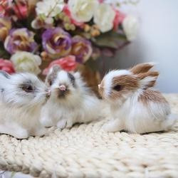 15CM Mini Realistic Cute White Plush Rabbits Fur Lifelike Animal Easter Bunny Simulation Model Birthday Gift Rabbit Toy