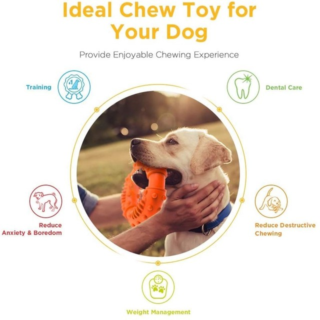 Puppy Teething Chew Toy 2