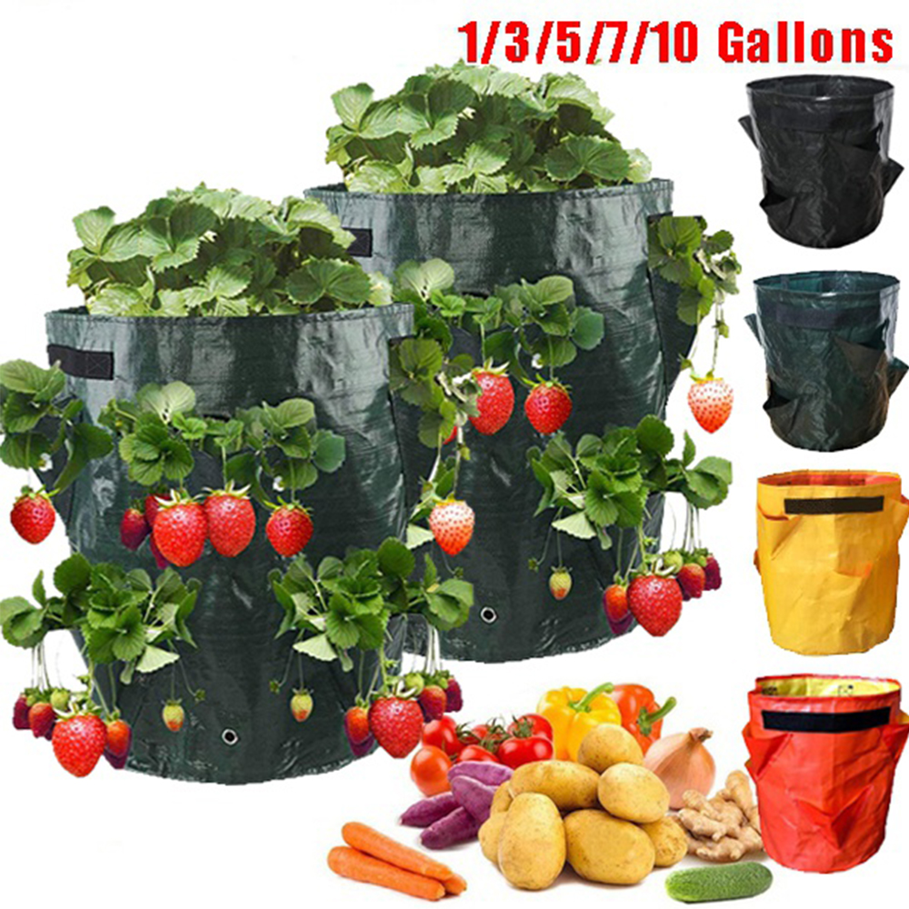 PE Strawberry Planting Grow Bag Vertical Flower Herb Pouch Root Breathable Vegetable Reusable Pot Tomato planting Container