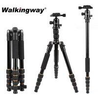 Walkingway Alluminio Protable Q666 borsa Da Viaggio Professionale Treppiedi di Macchina Fotografica Monopiede Testa A Sfera e Supporto Del Telefono per DSLR Smartphone Video