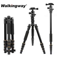 Walkingway aluminium portable Q666 professionnel caméra de voyage trépied monopode rotule et support pour téléphone pour DSLR Smartphone vidéo