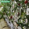 Растение фиксированная лоза полка для колец кронштейн забор цветочный горшок Специальный цветок стенд Soilless выращивание посадочный кроншт...