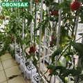 Plant Vaste Wijnstok Plank Ring Beugel Hek Bloempot Speciale Bloem Stand Grondloze Teelt Planten Beugel Solar Montage