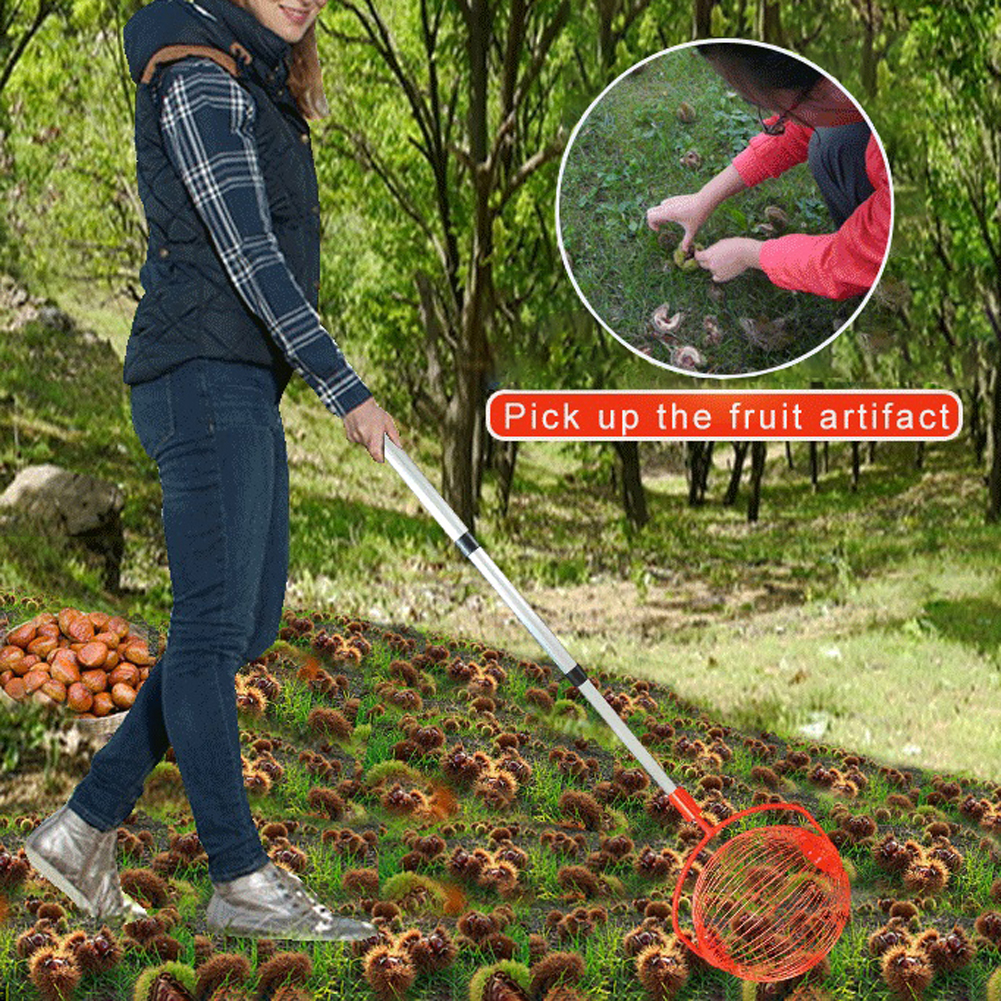 Orchards NEW Nut Retractable Chestnuts Garden O9 Family Roller Ball Alloy Fruit Harvester Picker Walnuts Tool Aluminum Collector