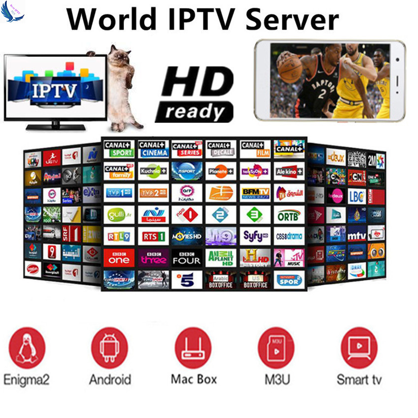 Europe IPTV Subscription France UK German Arabic Dutch Sweden Spain Poland Portugal USA Smart TV IPTV M3U 8000 Live