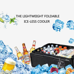 Cooler Chest for Picnics Beach-Trips Storage-Box Chill 60L Insulation Collapsible Outdoor