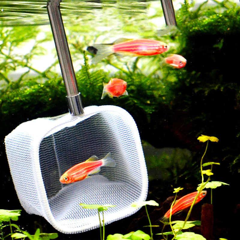 حوض للأسماك الصيد رود الصيد مستديرة مربع جيب الروبيان اصطياد شبكات صافي الفولاذ المقاوم للصدأ قابل للسحب ثلاثية الأبعاد أدوات تنظيف الحوض