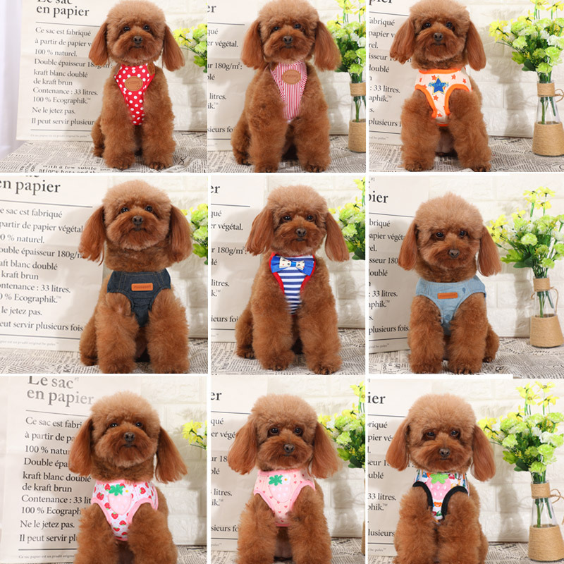 Dog Chain Pet Dog Hand Holding Rope Teddy Chest Small Puppy Suspender Strap Dog Vest Style Dog Lace Chest And Back Dog