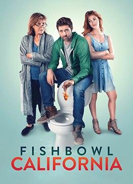 《鱼缸加州》2018年美国剧情,喜剧电影在线观看