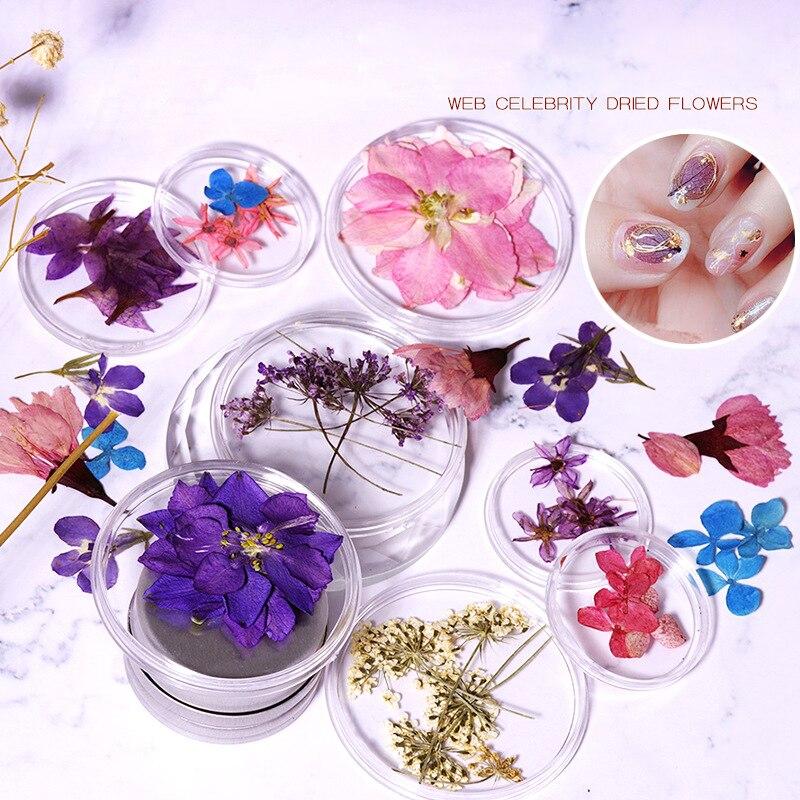 1 Box/5 pcs 3D Dried Flower Nail Decoration Natural Floral Sticker Mixed Dry Flower DIY Nail Art Decals Jewelry UV Gel Manicure|Rhinestones & Decorations| - AliExpress
