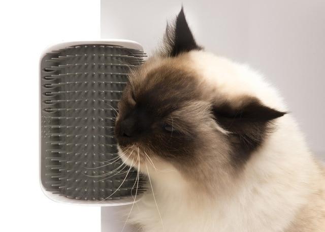 Corner's Face Mint Massage Comb  1