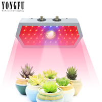1000w LED Grow Light COB+Double Chips Full Spectrum with Dimmable for Greenhouse Indoor Plant Veg and Flower