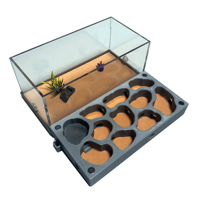 3D Acryl Flat Ant Farm Ecological Ant Nest with Feeding Area Concrete Ant House font b